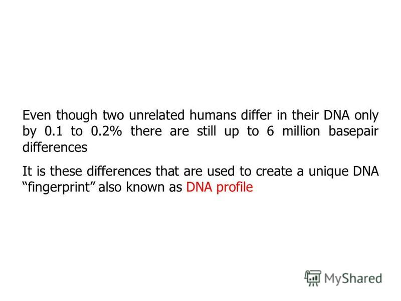 Even though two unrelated humans differ in their DNA only by 0.1 to 0.2% there are still up to 6 million basepair differences It is these differences that are used to create a unique DNAfingerprint also known as DNA profile
