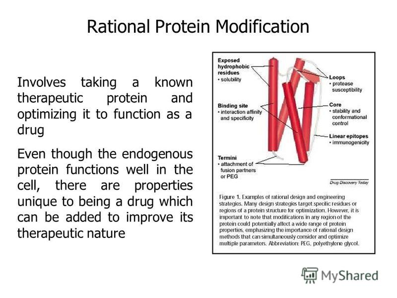 Rational Protein Modification Involves taking a known therapeutic protein and optimizing it to function as a drug Even though the endogenous protein functions well in the cell, there are properties unique to being a drug which can be added to improve