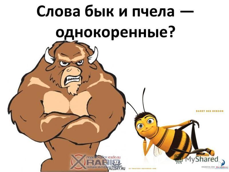 Слова бык и пчела однокоренные?