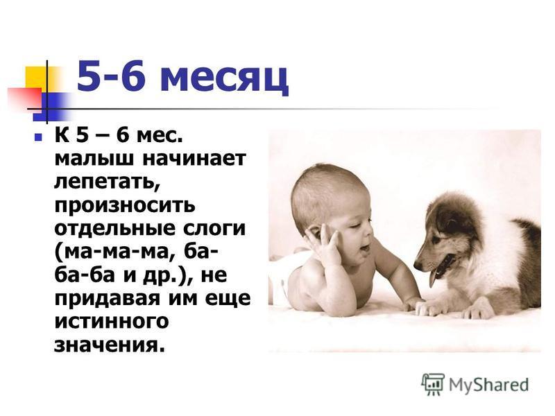 5-6 месяц К 5 – 6 мес. малыш начинает лепетать, произносить отдельные слоги (ма-ма-ма, ба- ба-ба и др.), не придавая им еще истинного значения.