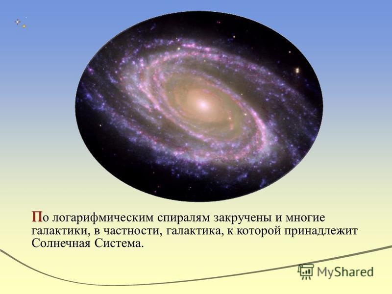 П П о логарифмическим спиралям закручены и многие галактики, в частности, галактика, к которой принадлежит Солнечная Система.