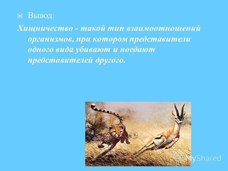 Вывод : Хищничество - такой тип взаимоотношений организмов, при котором представители одного вида убивают и поедают представителей другого.