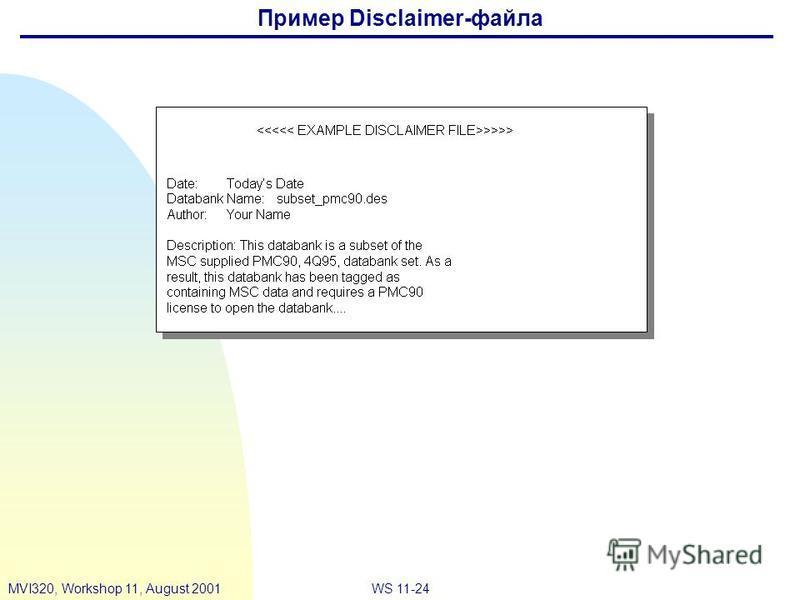 WS 11-24MVI320, Workshop 11, August 2001 Пример Disclaimer-файла