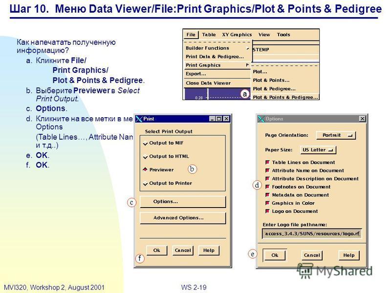 WS 2-19MVI320, Workshop 2, August 2001 Шаг 10. Меню Data Viewer/File:Print Graphics/Plot & Points & Pedigree Как напечатать полученную информацию? a.Кликните File/ Print Graphics/ Plot & Points & Pedigree. b.Выберите Previewer в Select Print Output.