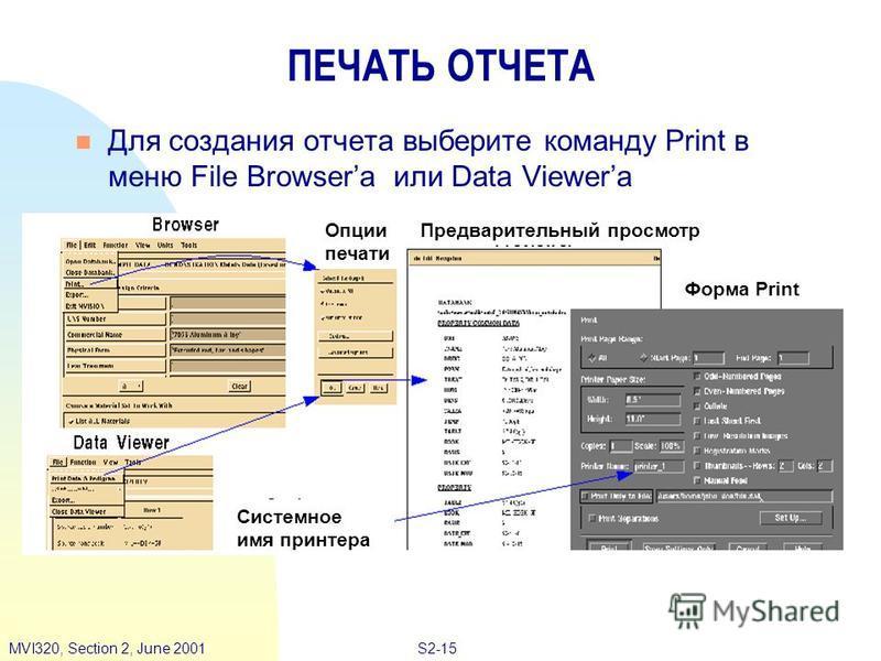 S2-15MVI320, Section 2, June 2001 ПЕЧАТЬ ОТЧЕТА Для создания отчета выберите команду Print в меню File Browserа или Data Viewerа Опции печати Предварительный просмотр Системное имя принтера Форма Print