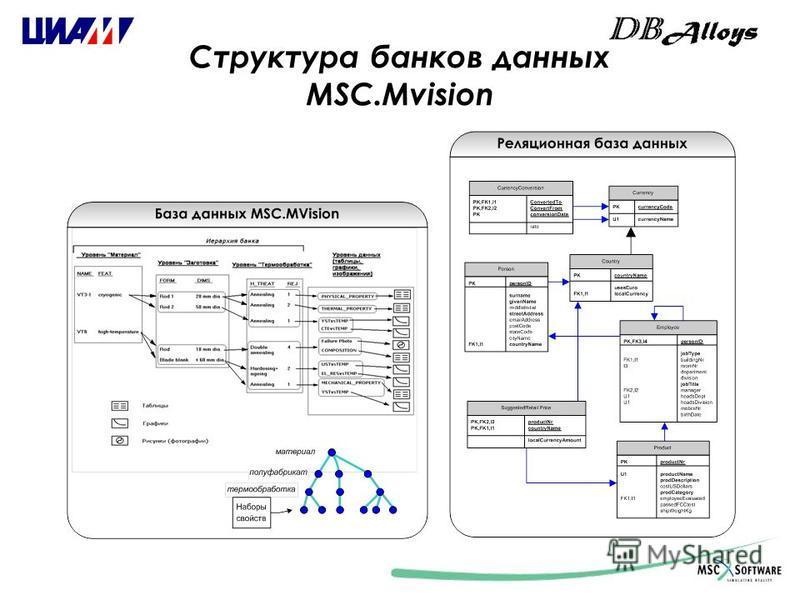 Структура банков данных MSC.Mvision