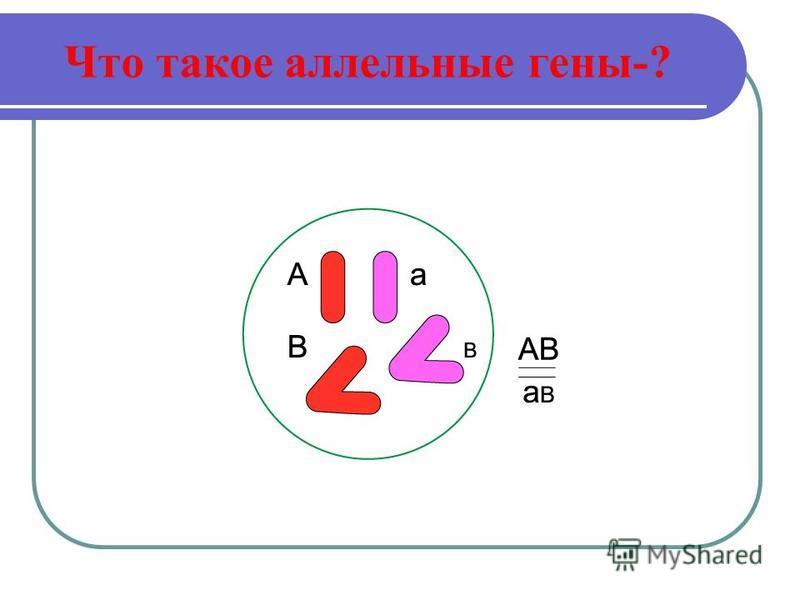 Что такое аллельные гены-?