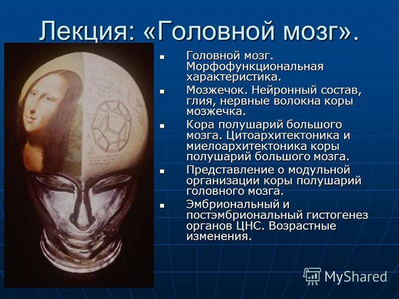 Лекция: «Головной мозг». Головной мозг. Морфофункциональная характеристика. Головной мозг. Морфофункциональная характеристика. Мозжечок. Нейронный состав, глия, нервные волокна коры мозжечка. Мозжечок. Нейронный состав, глия, нервные волокна коры моз