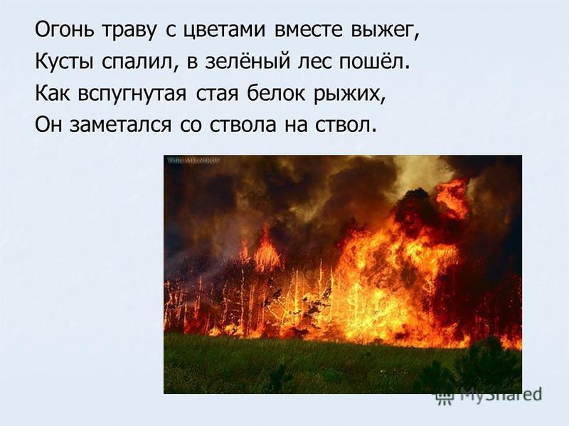 Огонь траву с цветами вместе выжег, Кусты спалил, в зелёный лес пошёл. Как вспугнутая стая белок рыжих, Он заметался со ствола на ствол.
