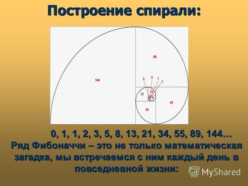 Построение спирали: 0, 1, 1, 2, 3, 5, 8, 13, 21, 34, 55, 89, 144… 0, 1, 1, 2, 3, 5, 8, 13, 21, 34, 55, 89, 144… Ряд Фибоначчи – это не только математическая загадка, мы встречаемся с ним каждый день в повседневной жизни: