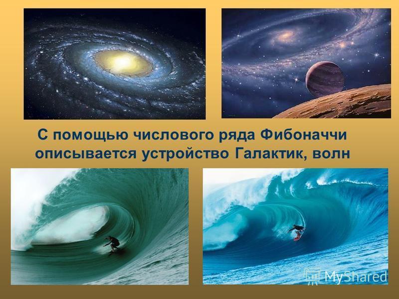 С помощью числового ряда Фибоначчи описывается устройство Галактик, волн