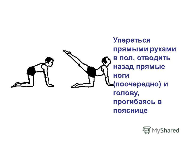 Упереться прямыми руками в пол, отводить назад прямые ноги (поочередно) и голову, прогибаясь в пояснице