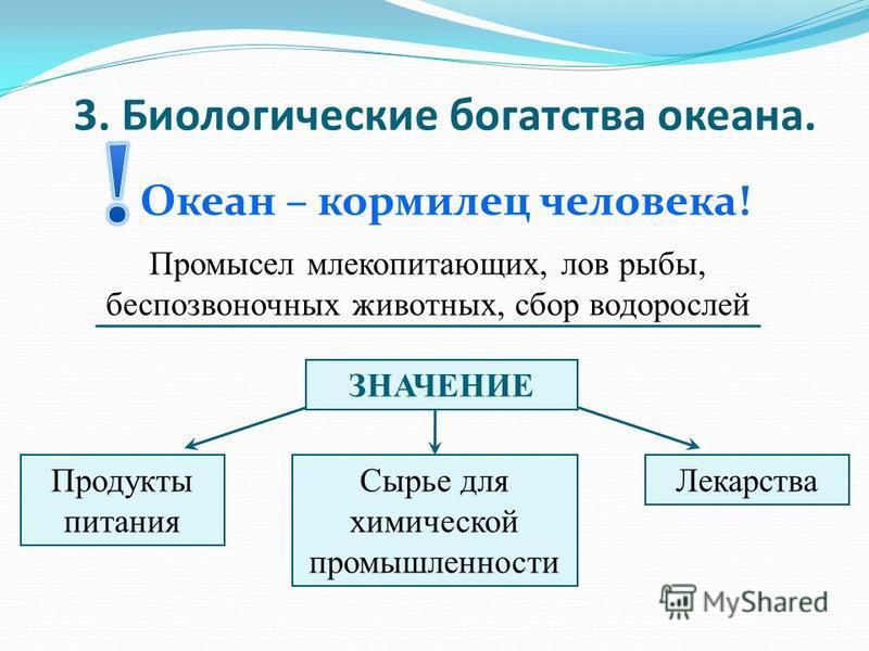 3. Биологические богатства океана. Океан – кормилец человека! Промысел млекопитающих, лов рыбы, беспозвоночных животных, сбор водорослей ЗНАЧЕНИЕ Продукты питания Сырье для химической промышленности Лекарства