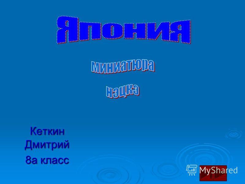 Кеткин Дмитрий 8 а класс