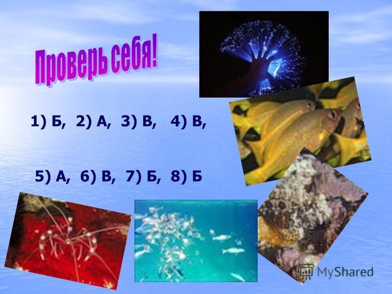 1) 1) Б, 2) А, 3) В, 4) В, 5) А, 6) В, 7) Б, 8) Б