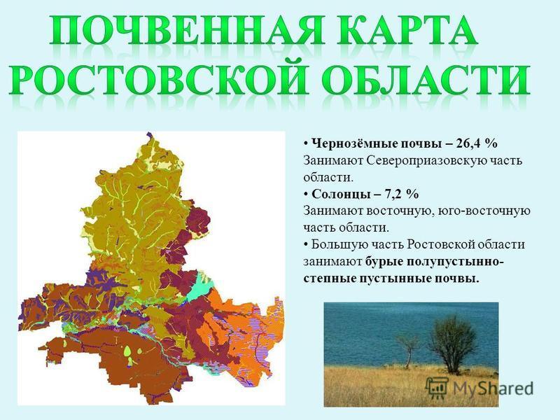 Чернозёмные почвы – 26,4 % Занимают Североприазовскую часть области. Солонцы – 7,2 % Занимают восточную, юго-восточную часть области. Большую часть Ростовской области занимают бурые полупустынно- степные пустынные почвы.