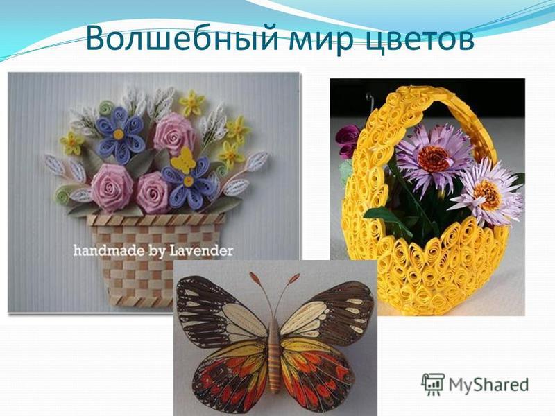 Волшебный мир цветов