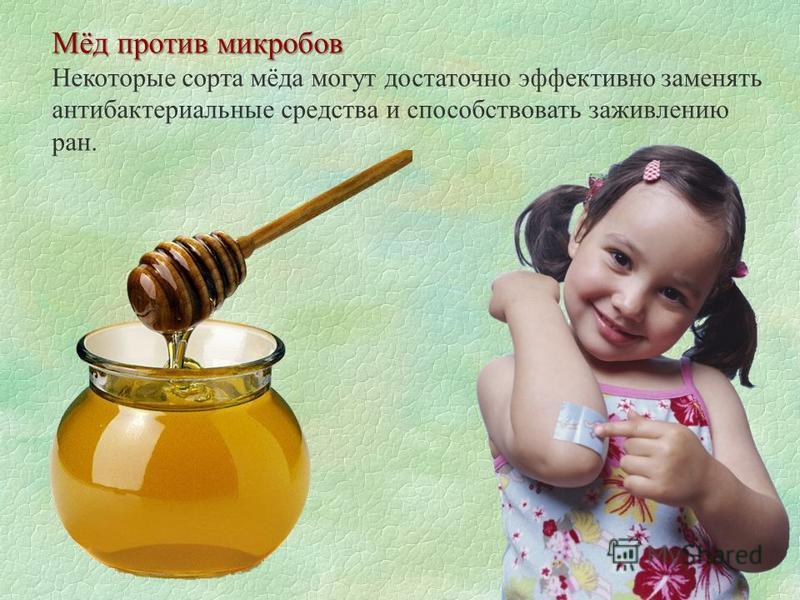 Мёд против микробов Некоторые сорта мёда могут достаточно эффективно заменять антибактериальные средства и способствовать заживлению ран.