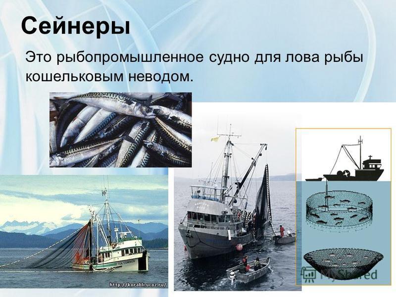 Сейнеры Это рыбопромышленное судно для лова рыбы кошельковым неводом.