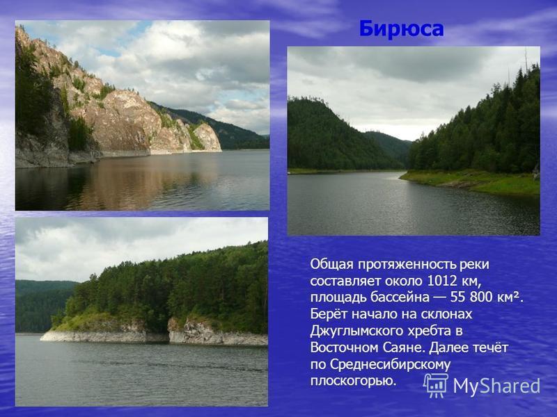 Бирюса Общая протяженность реки составляет около 1012 км, площадь бассейна 55 800 км². Берёт начало на склонах Джуглымского хребта в Восточном Саяне. Далее течёт по Среднесибирскому плоскогорью.