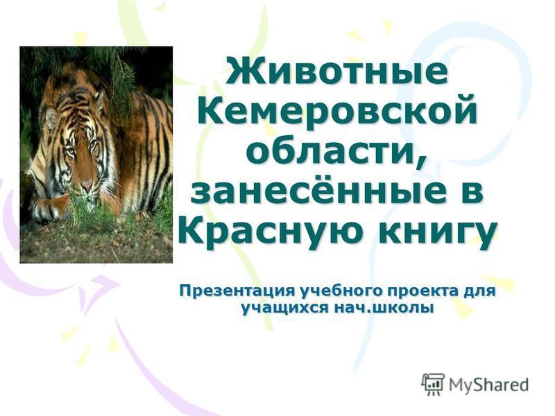 Животные Кемеровской области, занесённые в Красную книгу Презентация учебного проекта для учащихся нач.школы