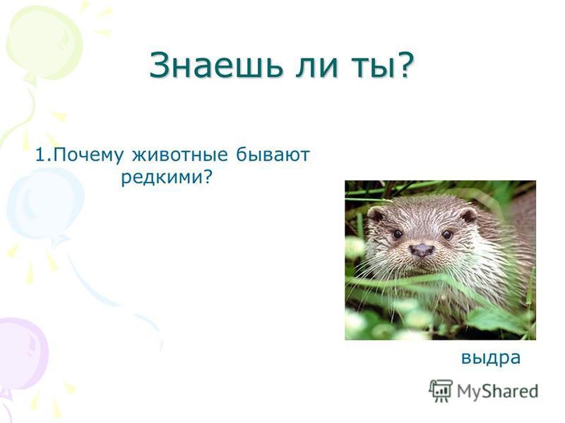 Знаешь ли ты? 1. Почему животные бывают редкими? выдра