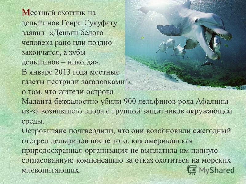 М М естный охотник на дельфинов Генри Сукуфату заявил: «Деньги белого человека рано или поздно закончатся, а зубы дельфинов – никогда». В январе 2013 года местные газеты пестрили заголовками о том, что жители острова Малаита безжалостно убили 900 дел