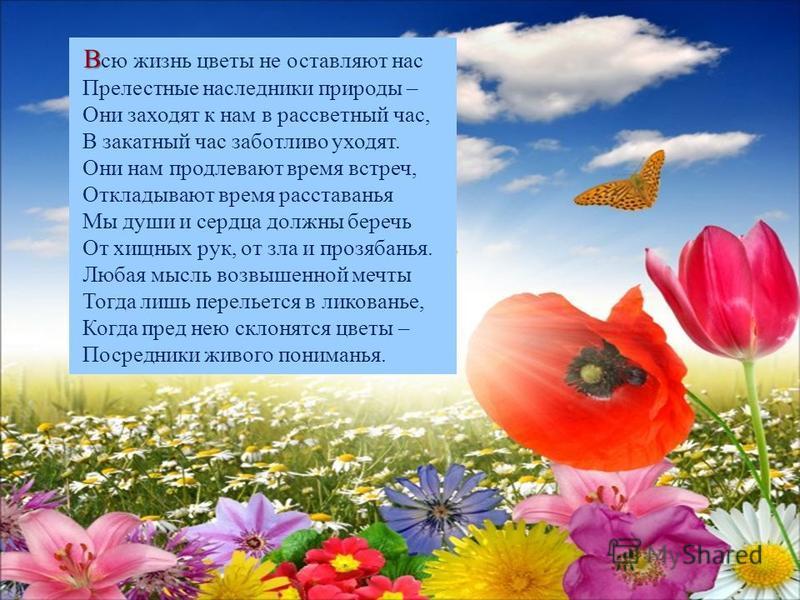 В В сю жизнь цветы не оставляют нас Прелестные наследники природы – Они заходят к нам в рассветный час, В закатный час заботливо уходят. Они нам продлевают время встреч, Откладывают время расставанья Мы души и сердца должны беречь От хищных рук, от з