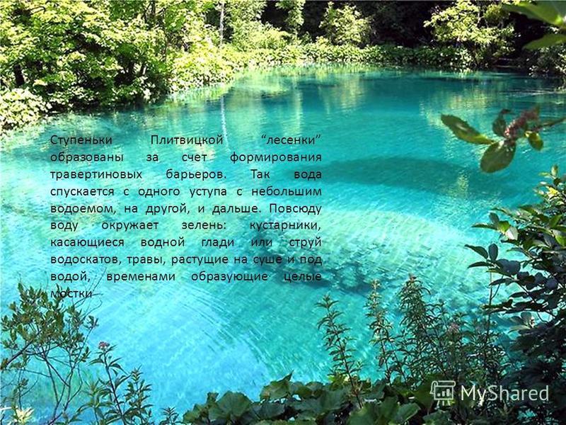 Ступеньки Плитвицкой лесенки образованы за счет формирования травертиновых барьеров. Так вода спускается с одного уступа с небольшим водоемом, на другой, и дальше. Повсюду воду окружает зелень: кустарники, касающиеся водной глади или струй водоскатов