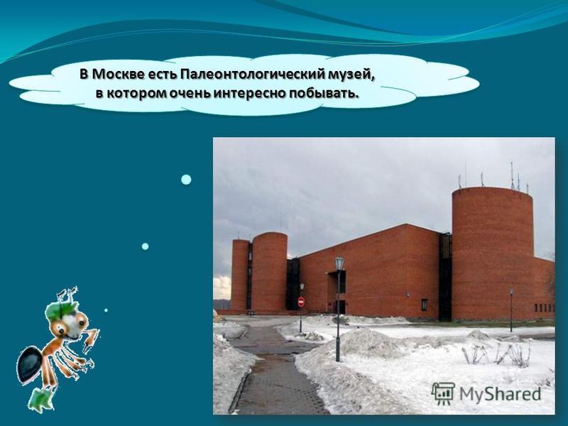В Москве есть Палеонтологический музей, в котором очень интересно побывать.