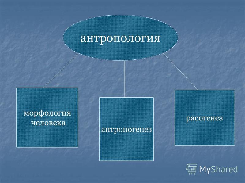 Антропология- наука, изучающая происхождение и эволюцию человека, изменение его внешнего вида.