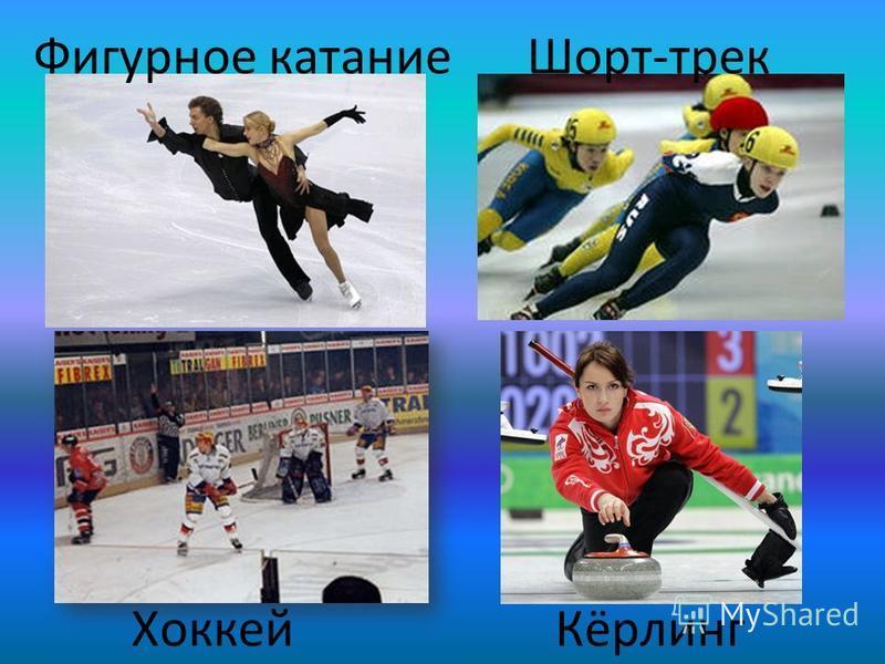 Сноубордин Бобслей Санный спорт Конькобежный спорт
