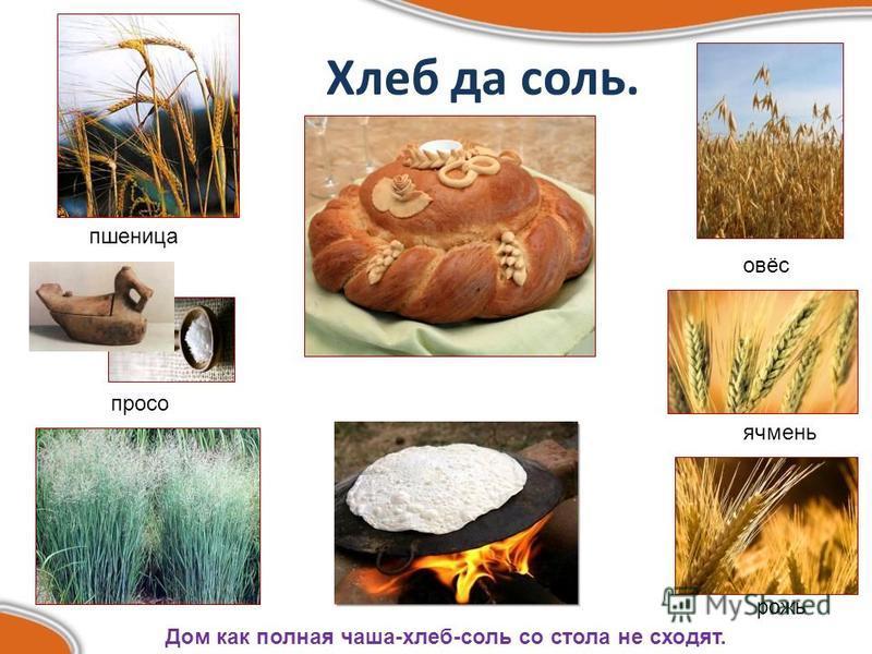 Хлеб да соль. Дом как полная чаша-хлеб-соль со стола не сходят. пшеница рожь ячмень просо овёс