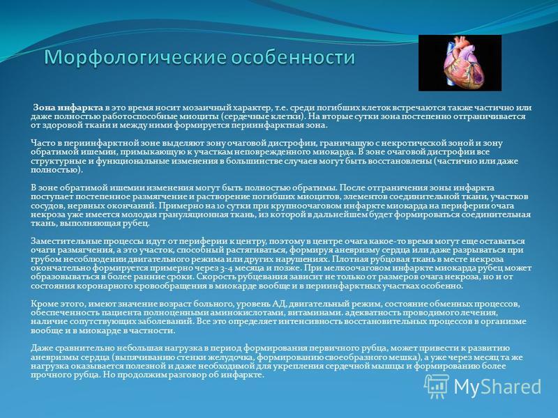 Зона инфаркта в это время носит мозаичный характер, т.е. среди погибших клеток встречаются также частично или даже полностью работоспособные миоциты (сердечные клетки). На вторые сутки зона постепенно отграничивается от здоровой ткани и между ними фо