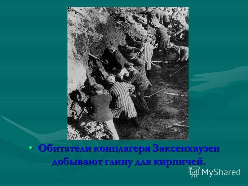 Обитатели концлагеря Заксенхаузен добывают глину для кирпичей.Обитатели концлагеря Заксенхаузен добывают глину для кирпичей.