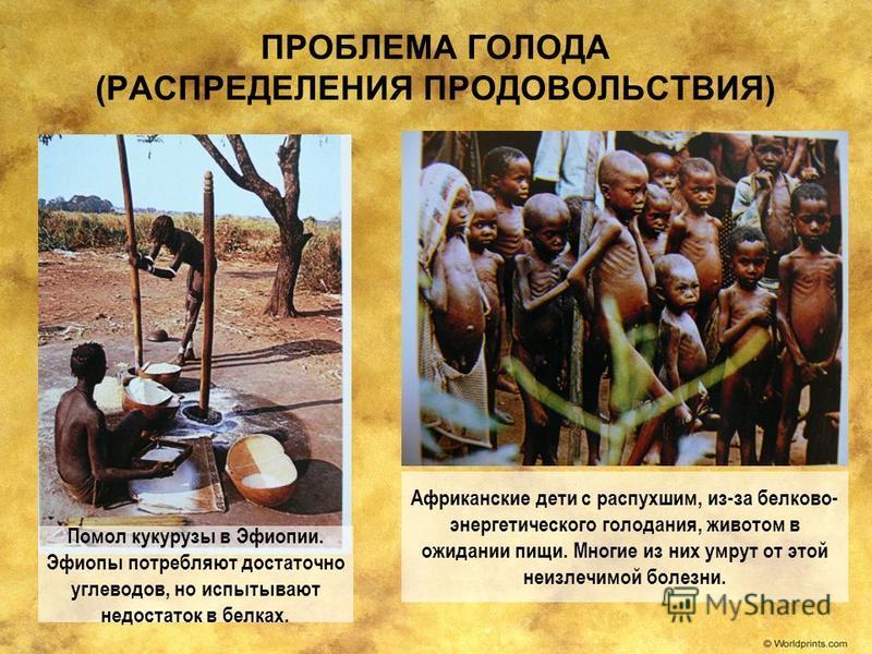 ПРОБЛЕМА ГОЛОДА (РАСПРЕДЕЛЕНИЯ ПРОДОВОЛЬСТВИЯ) Африканские дети с распухшим, из-за белково- энергетического голодания, животом в ожидании пищи. Многие из них умрут от этой неизлечимой болезни. Помол кукурузы в Эфиопии. Эфиопы потребляют достаточно уг
