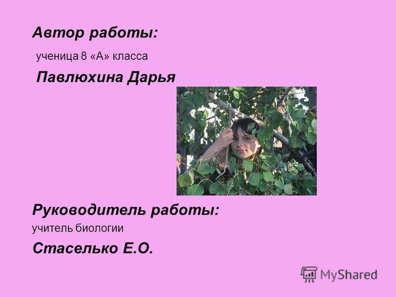 Автор работы: ученица 8 «А» класса Павлюхина Дарья Руководитель работы: учитель биологии Стаселько Е.О.