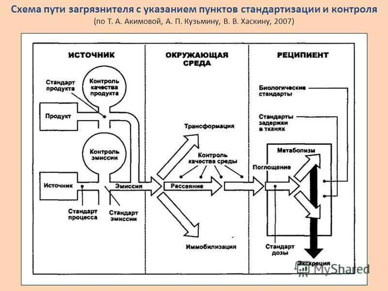 Схема пути загрязнителя с указанием пунктов стандартизации и контроля (по Т. А. Акимовой, А. П. Кузьмину, В. В. Хаскину, 2007)