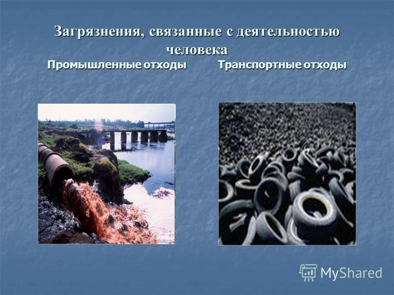 Загрязнения, связанные с деятельностью человека Промышленные отходы Транспортные отходы