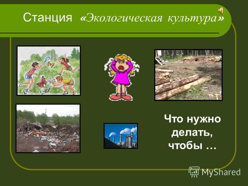 Станция « Экологическая культура » Что нужно делать, чтобы …