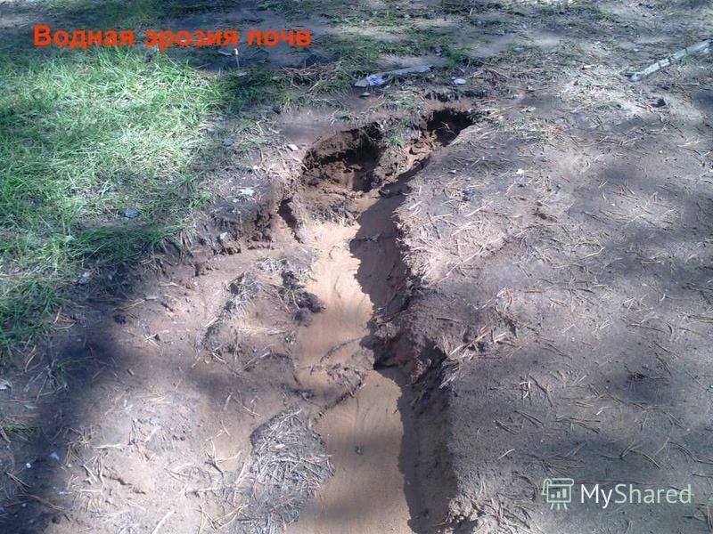 Водная эрозия почв