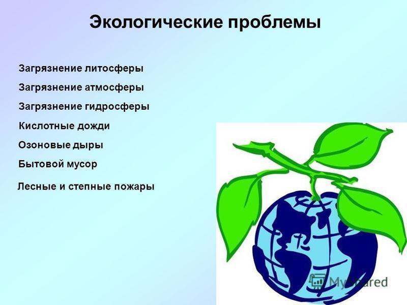 Экологические проблемы Загрязнение литосферы Загрязнение атмосферы Загрязнение гидросферы Кислотные дожди Озоновые дыры Бытовой мусор Лесные и степные пожары