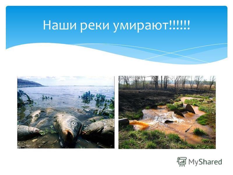 Наши реки умирают!!!!!!