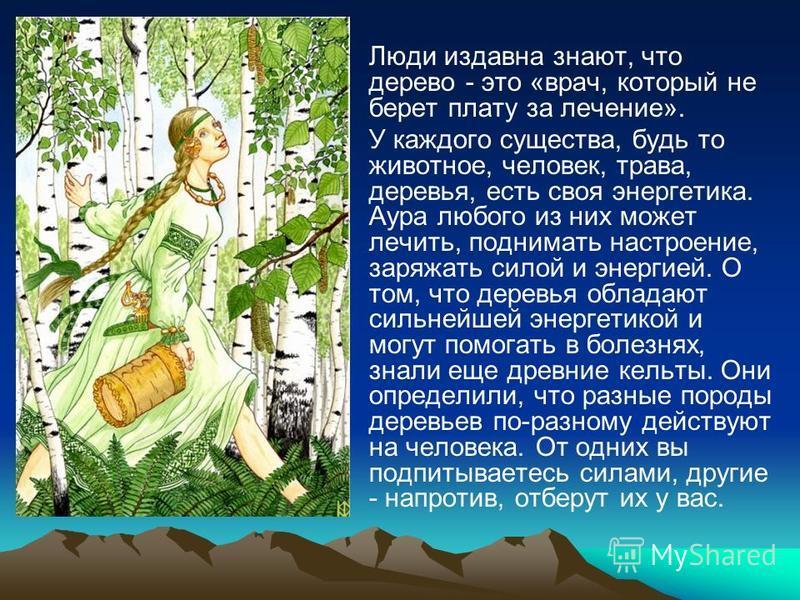 Люди издавна знают, что дерево - это «врач, который не берет плату за лечение». У каждого существа, будь то животное, человек, трава, деревья, есть своя энергетика. Аура любого из них может лечить, поднимать настроение, заряжать силой и энергией. О т