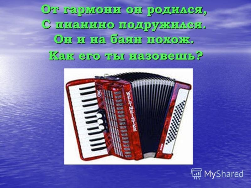 От гармони он родился, С пианино подружился. Он и на баян похож. Как его ты назовешь?