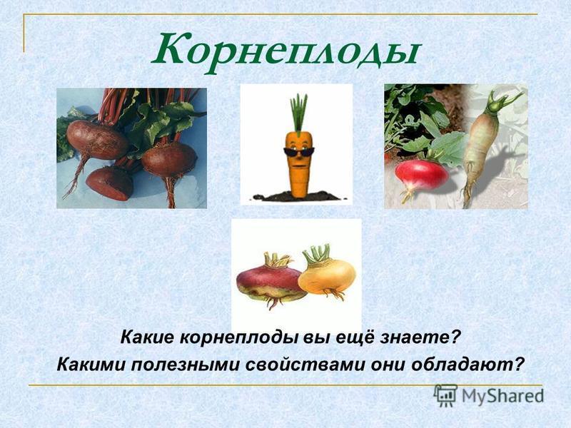 Какие корнеплоды вы ещё знаете? Какими полезными свойствами они обладают? Корнеплоды