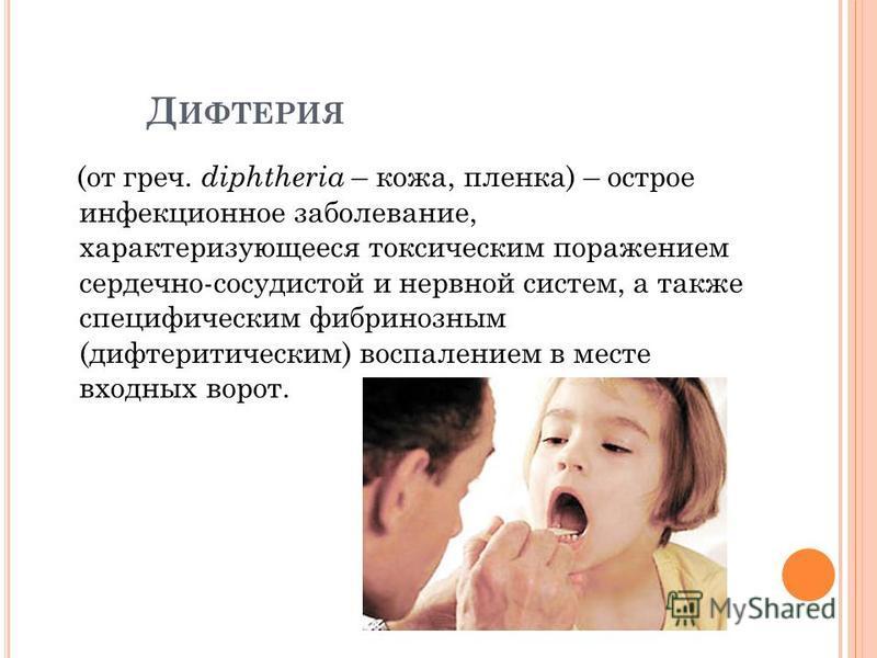 Д ИФТЕРИЯ (от греч. diphtheria – кожа, пленка) – острое инфекционное заболевание, характеризующееся токсическим поражением сердечно-сосудистой и нервной систем, а также специфическим фибринозным (дифтеритическим) воспалением в месте входных ворот.