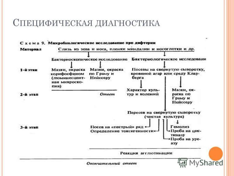 С ПЕЦИФИЧЕСКАЯ ДИАГНОСТИКА