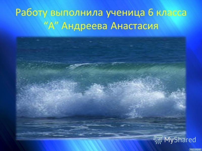 Работу выполнила ученица 6 классаА Андреева Анастасия