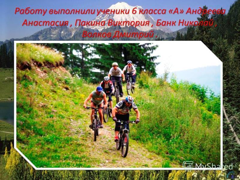 Работу выполнили ученики 6 класса «А» Андреева Анастасия, Пакина Виктория, Банк Николай, Волков Дмитрий.